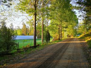 väg till gården